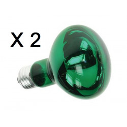 2 X Bombilla coloreada color verde 60w